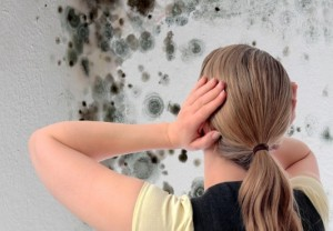 Mold Inspection for New Home Buyers